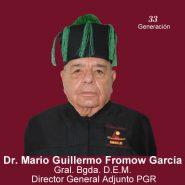 mario-guillermo-fromow-garcia