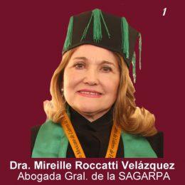 Mireille Roccatti Velazquez