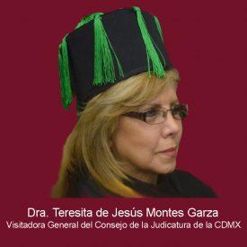 009Teresita de Jesús Montes Garza