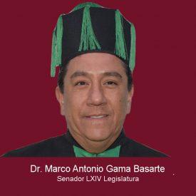 025Marco Antonio Gama Basarte