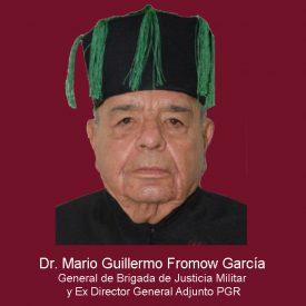 042Mario Guillermo Fromow García