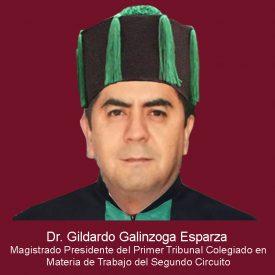065Gildardo Galinzoga Esparza